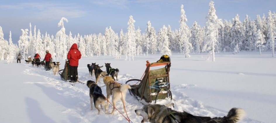 Family Dream Holiday to Finnish Lapland - Image 1